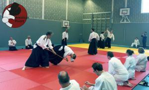 Proefexamens Aikido Almere