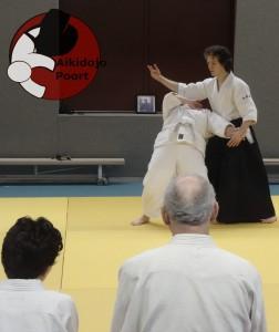 Aikidojo Almere Poort Opening
