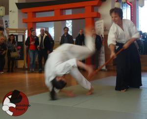 Demo Camera Japan Aikido Almere