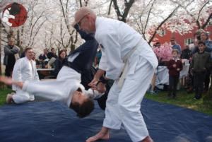 Aikido Almere Kersenbloesem Festival