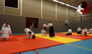 Aikido Almere Stage