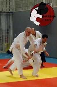 Aikido Almere Stage