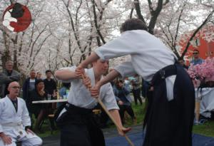 Almere Buiten Kersenbloesem Aikido