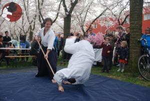Almere Buiten Kersenbloesem Festival Aikido